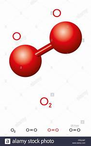 Oxygen  O2  Molecule Model And Chemical Formula  Also