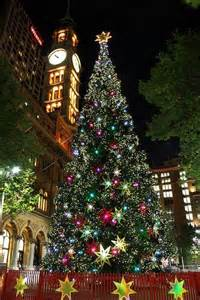 christmas tree in sydney australia crazy for christmas 2 pint