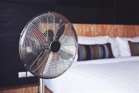 Gegen Mücken Im Schlafzimmer by Bildquelle 169 Ben Bryant