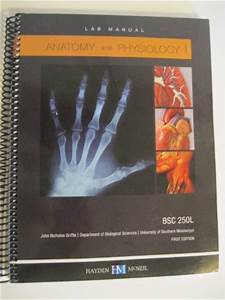 Anatomy And Physiology I Lab Manual Bsc 250l University Of