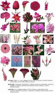 color | Modern Petals Blog