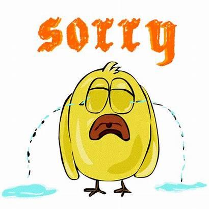 Sorry Stickers Sticker Giphy Sad Whatsapp Animals