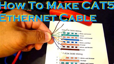 Cat Cable Color Order Choices