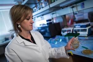 Department of Pathology - | University of Utah