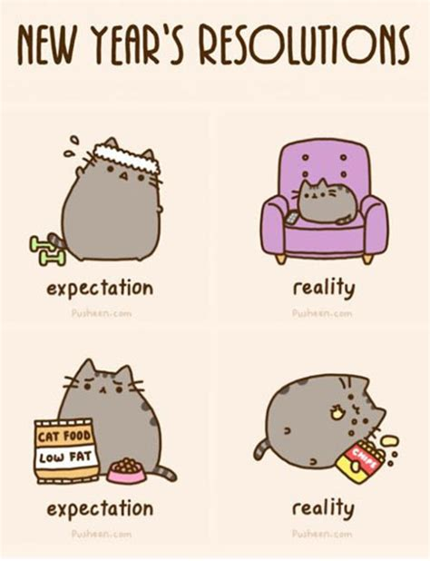 New Years Resolution Meme - new year s resolutions pusheen know your meme