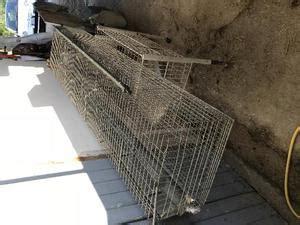 gabbie per conigli nani usate occasionissima gabbie per conigli da ingrasso posot class