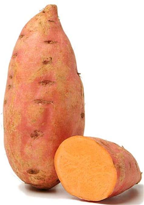cuisine vapeur douce 10 bonnes raisons de manger de la patate douce