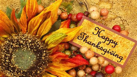 beautiful thanksgiving photos the origins and traditions of thanksgiving day