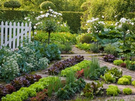 beautiful vegetable gardens  design tips  ideas