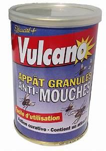 Produit Pour Tuer Les Mouches : poudre anti mouches appat granul s ~ Premium-room.com Idées de Décoration