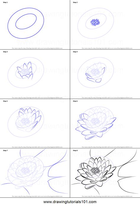 draw lily pad printable step  step drawing sheet