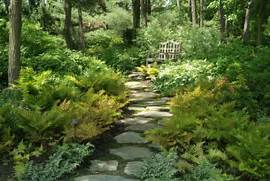 Pathways Steppers Sisson Landscapes How To Illuminate Your Yard With Landscape Lighting HGTV Secret Gardens Traditional Landscape Sydney By Www KarlGercens Gravel Walkways Ideas