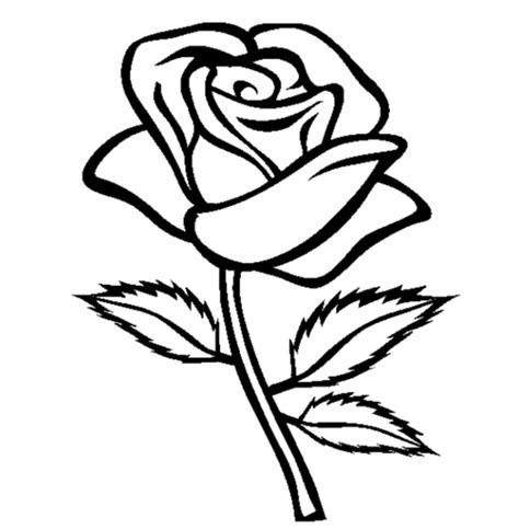 roses coloring pages getcoloringpagescom