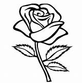 Coloring Rose Roses Printable Sheets Adults Flower sketch template