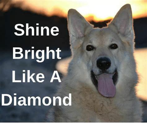 Shine Bright Like A Diamond Meme - 25 best memes about shine shine memes