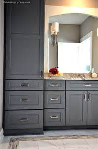 bathroom cabinetry ideas 25 best ideas about bathroom cabinets on bathroom cabinets and shelves bathrooms