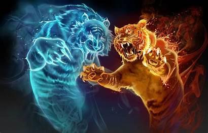 Fire Tiger Water Magic Spirits Animal Flame