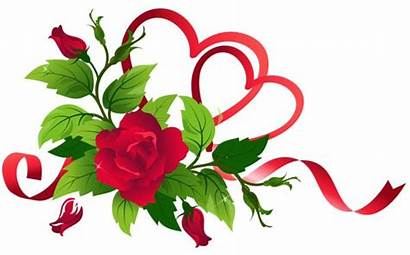 Roses Hearts Transparent Clipart Flowers Clip Rose
