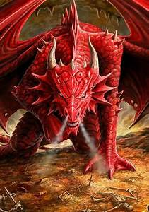 17 best ideas about Red Dragon on Pinterest | Fire dragon ...