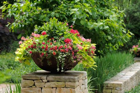 best potted flowers what is the best material for plant containers and planters gp