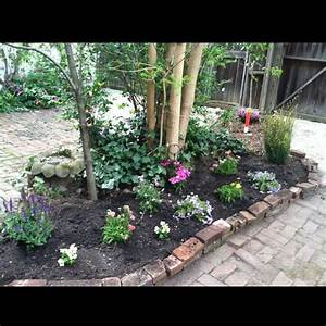 Flower, Bed, Around, Trees, In, Front, Yard