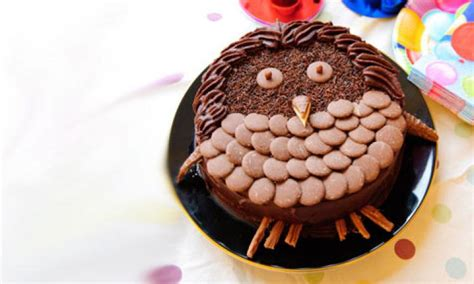 Chocolate owl birthday cake recipe - Kidspot