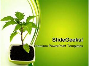 Technology Roadmap Powerpoint Template Growing Green Plant Nature Powerpoint Templates And