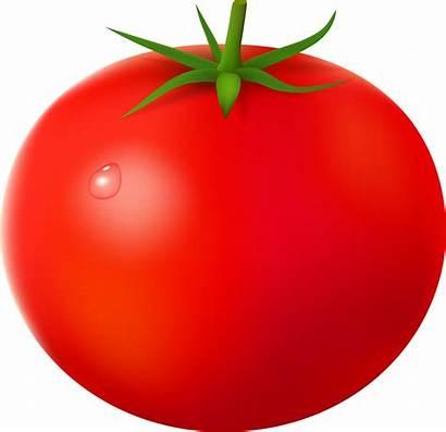 Fruits Legumes Tubes Commentaires Articles Ou Gifs