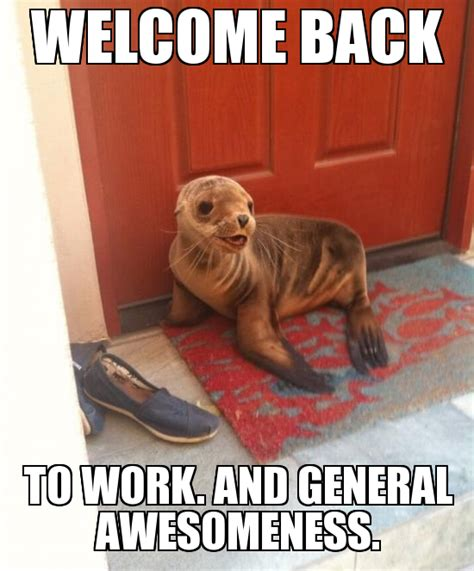 Back To Work Meme - welcome back to work meme www imgkid com the image kid has it