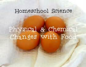Physical and Chemical Change Projects
