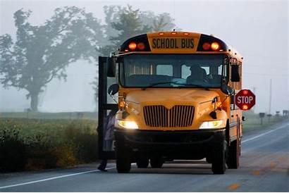 Bus Wallpapers Flashing Stop Lights Morning Buses