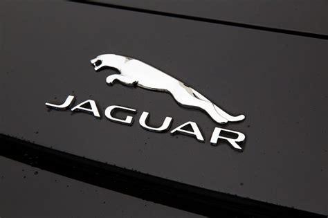 10 Top Best Animal Logo Designs