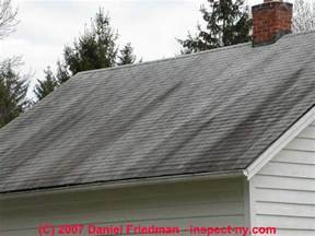 Mold On Asphalt Roof Shingles