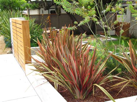 plants for bathrooms nz great design plant new zealand flax
