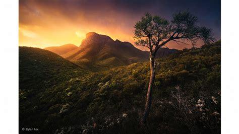 australian geographic nature photographer   year