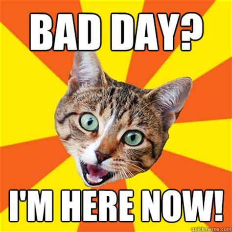 Bad Kitty Meme - bad day cat meme cat planet cat planet