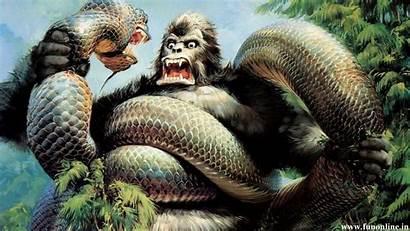 Anaconda Wallpapers Jungle Attack Background Kong King