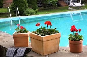 Pool Wärmepumpe Stromverbrauch : pool badespass ber das ganze jahr dank poolheizungen mit solartechnik ~ Frokenaadalensverden.com Haus und Dekorationen