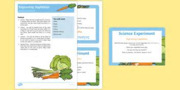 Eyfs Regrowing Vegetables Science Experiment And Prompt Card Pack Carrot
