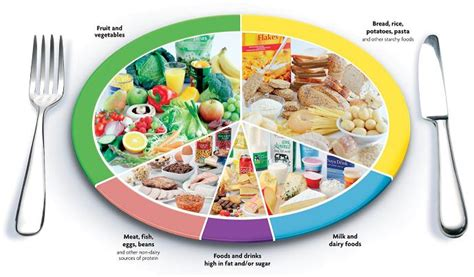 proportion cuisine what is the best ratio of proteins carbs and