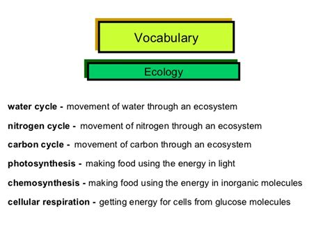 hsa vocabulary  definitions