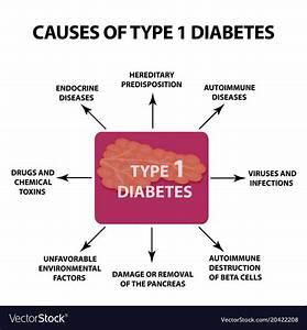 Type 1 Diabetes Diagram For Kids