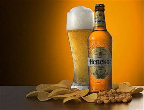 beer wallpapers  pics curious funny  pictures