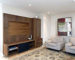 Custom Entertainment Unit Contemporary Living Room