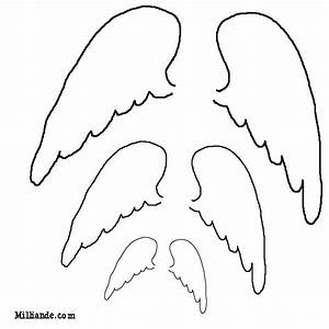 Outline Of Angel Wing