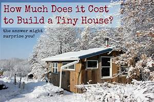 How much does it cost to build a tiny house homestead honey for Tiny house cost