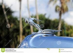 Bouchon De Radiateur Voiture : fin am ricaine de d tail de bouchon de radiateur de voiture photo ditorial image 39023381 ~ Medecine-chirurgie-esthetiques.com Avis de Voitures