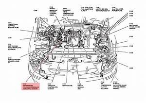 1989 Ford F 150 Wiring Diagram Drawing 41744 Desamis It