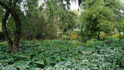 Förderung Modernisierung Von Landschaftsgärten Gabotde