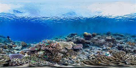 World Ocean Summit Insight Hour | Mirpuri Foundation